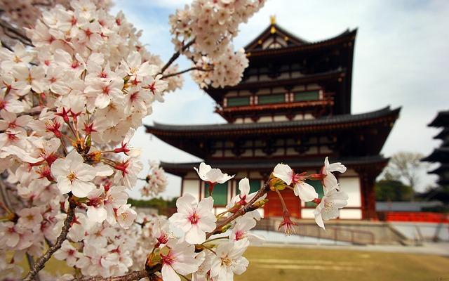 Templo sagrado al lado árbol de cerezo