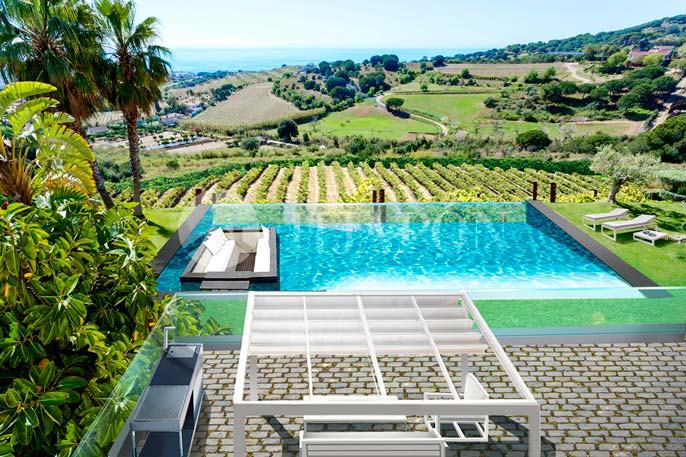 Swimming pool between vineyards
